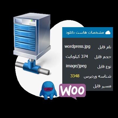 اتصال استاندارد رسانه های وردپرس ، فایل های ووکامرس و EDD به هاست دانلود